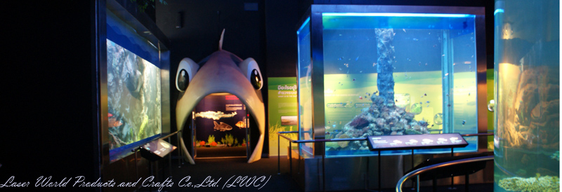 1-sided&4 sided transparent wall @Nakornsawan Aquarium Project