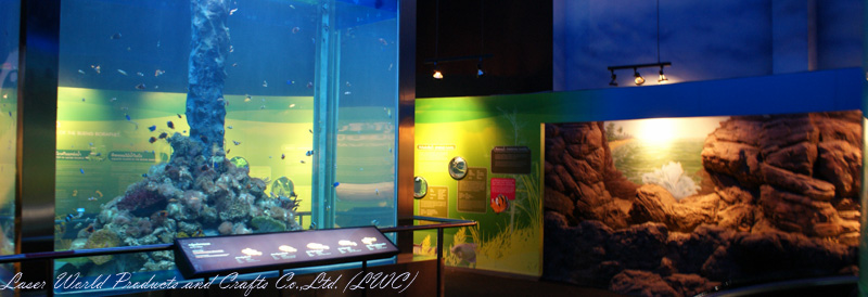 4-sided transparent wall @Nakornsawan Aquarium Project